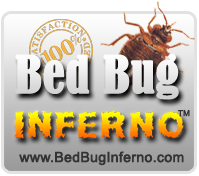 The Bed Bug Inferno